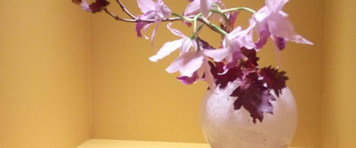 草月展 ikebana